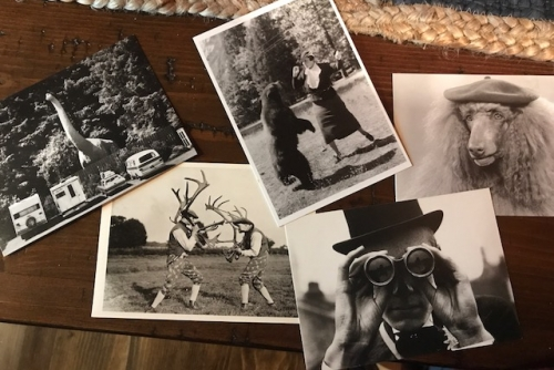 Writing Prompt #4: Postcards from the Creative Edge